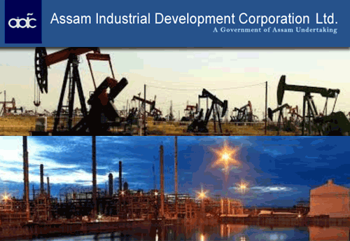 Image result for Assam Industrial Development Corporation Limited.
