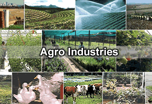 agro industries Nmk agro industries (pvt) ltd nmk agro's range of all natural coconut products are created using physical processes that do not damage the product in any way or remove any nutrients from it.