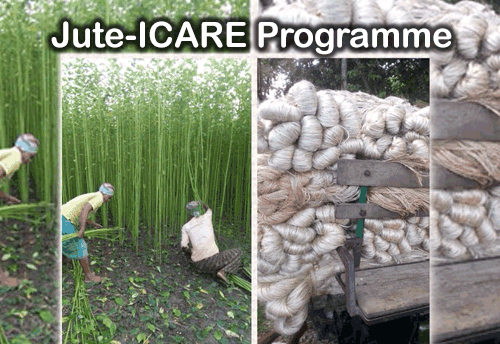 Textile Ministry asks all Chief Ministers to take up Jute-ICARE programme in their states