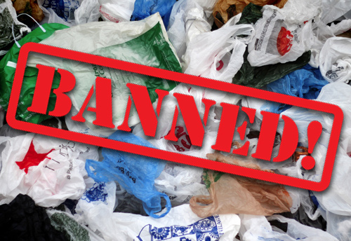 State earmarks Rs 10 cr for awareness on plastic ban