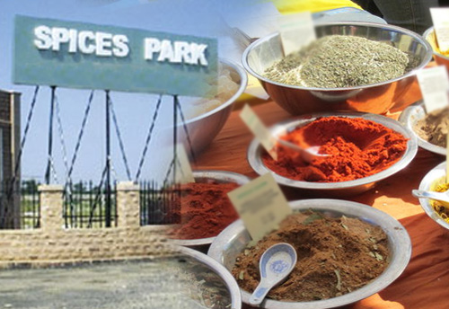 KINFRA gets in-principle approval to set up spices park in Idukki; Park to include plots for SMEs