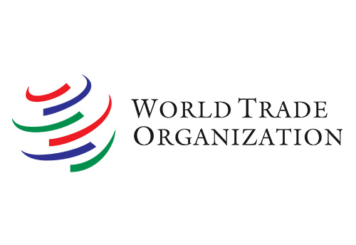 Special and differential treatment is critical at WTO and is non-negotiable for India: Commerce Minister