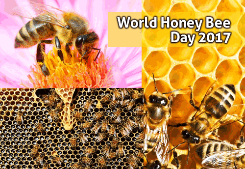 President-MSME Min visits Apiary on World Bee Day 2017