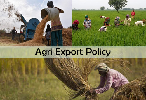 Agri Export Policy to provide huge impetus to agricultural exports and will double farmers' income: FIEO