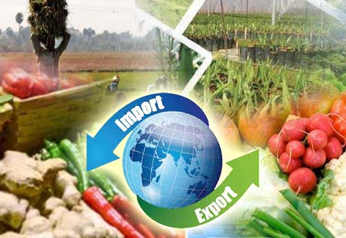 IIFT & TPCI jointly launch certificate programme in agri import & export management