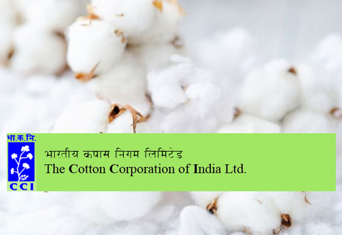 Union Govt taking measures to bring down contamination in cotton: Chairman of CCI