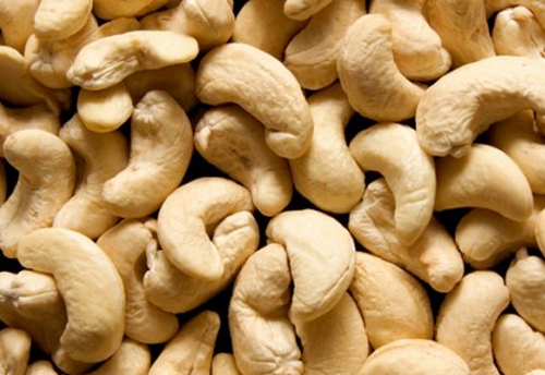 Govt working on scrapping import duty on cashew kernel: Prabhu
