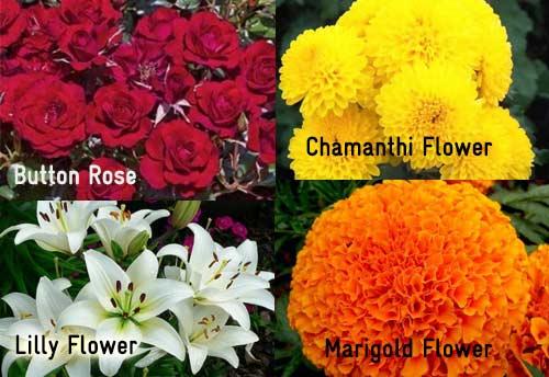 Tamil Nadu begins export of GI certified flowers for Indian diaspora in USA and Dubai