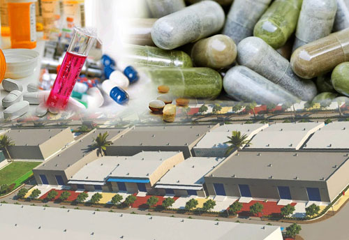 Govt keen to support Industrial parks for API, Pharma & nutraceuticals