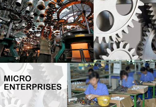 Need to organize micro enterprises into clusters in Meghalaya: Comm & Ind Sec