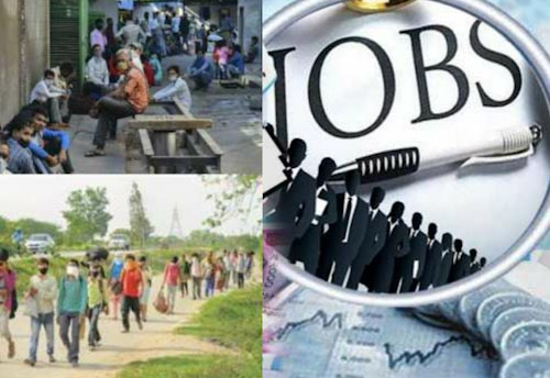 Delhi govt to provide jobs to COVID hit migrants & labourers