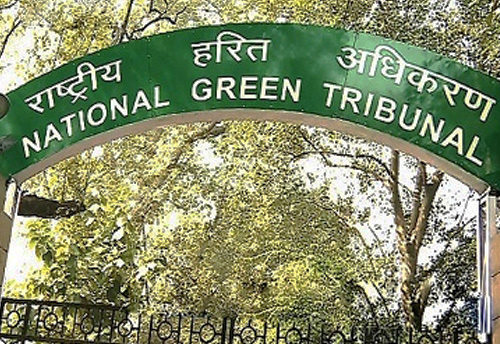 NGT directs CPCB to submit action report taken against over 50K industrial units operating in Delhi's residential areas without nod