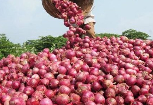 Onion prices jumps to Rs 80 per kg in Delhi