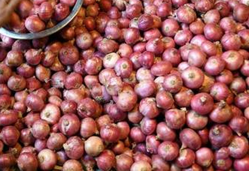 Govt imposes $850 per tonne MEP on onion exports, aims to curtail domestic prices