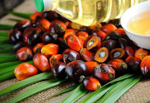 Commerce Min recommends 5% safeguard duty on palm oil imported from Malaysia