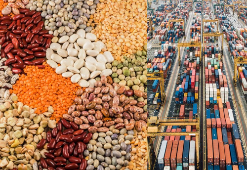 Pulses importers asked to complete their import by Oct 13, 2019