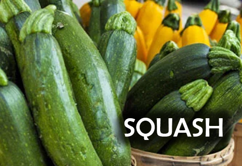 Iraq bans import of Squash (KOSA) from all over the world