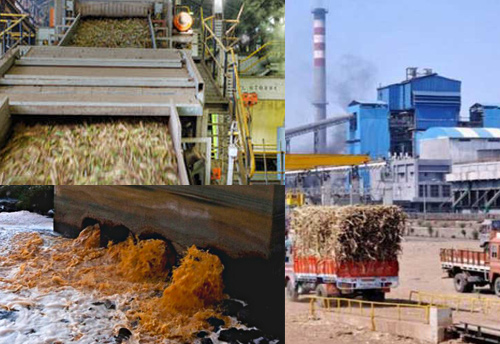 sugar industry in up