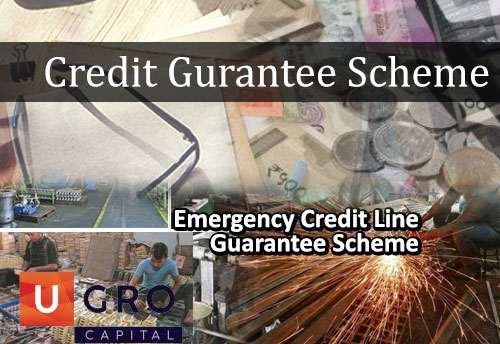 U GRO Capital urges govt to bring Credit Guarantee Scheme in line with ECLGS
