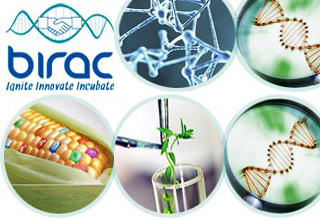 Govt to promote small biotech units for innovation research