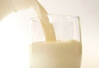 Development of the dairy sector