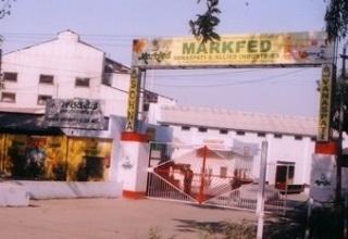 Punjab govt to set up food processing unit near Jalandhar