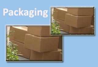 IIP to offer B.Tech in packaging